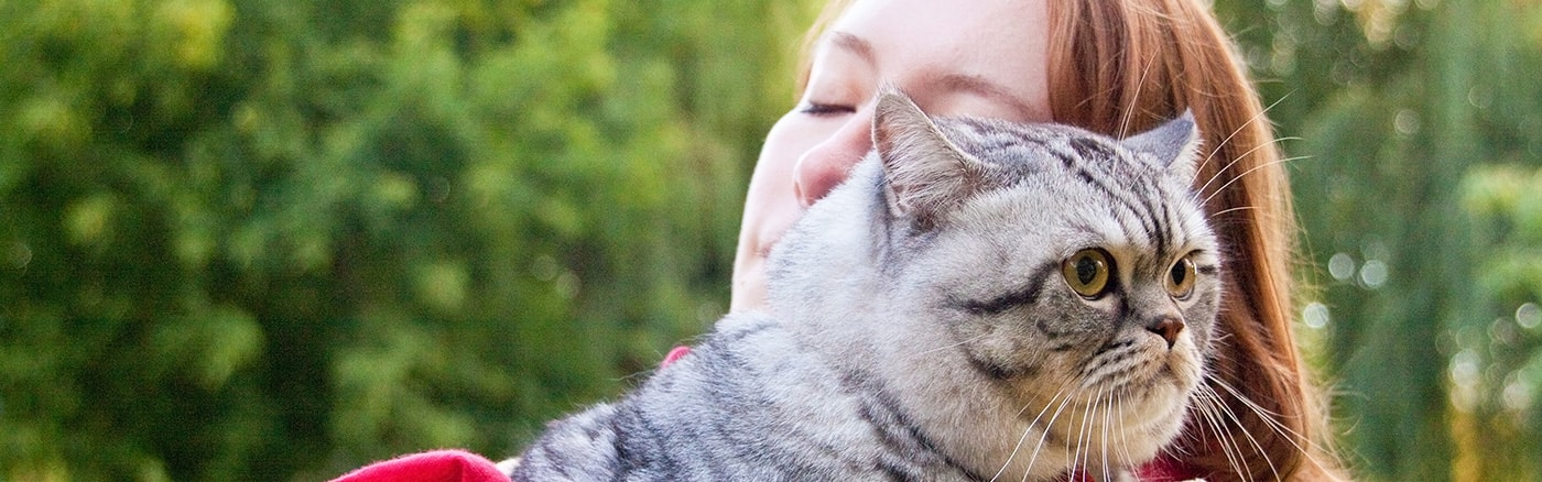 Pets are family...  and as such they deserve a caring and dignified farewell
